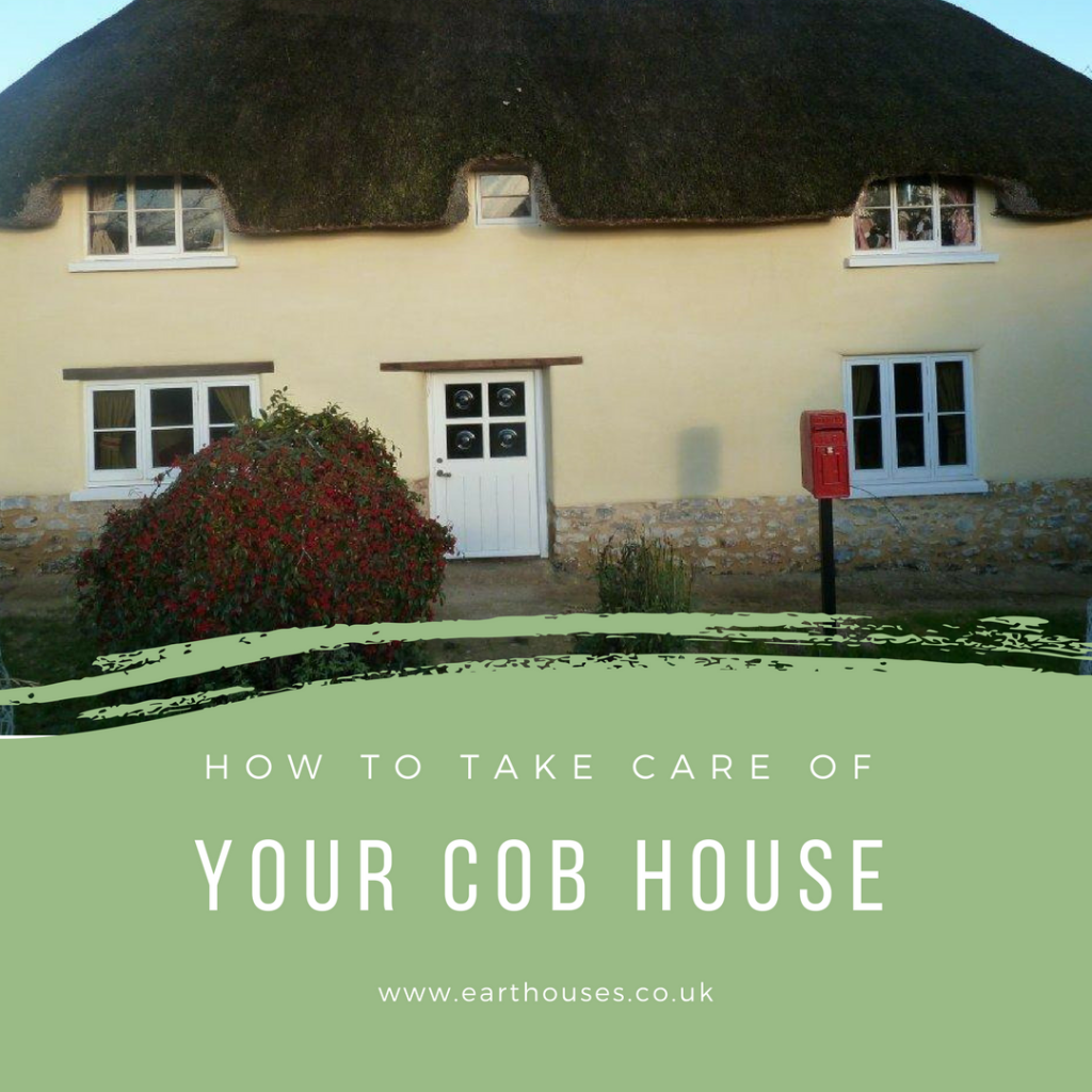 Con and Lime maintenance - How to take care of your cob house and keep it beautiful
